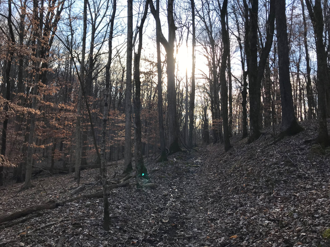 Westhaven Trails: Running Paths and Trails Highlighted in Williamson County by Elena McCown, LLC a health coach in Franklin, TN