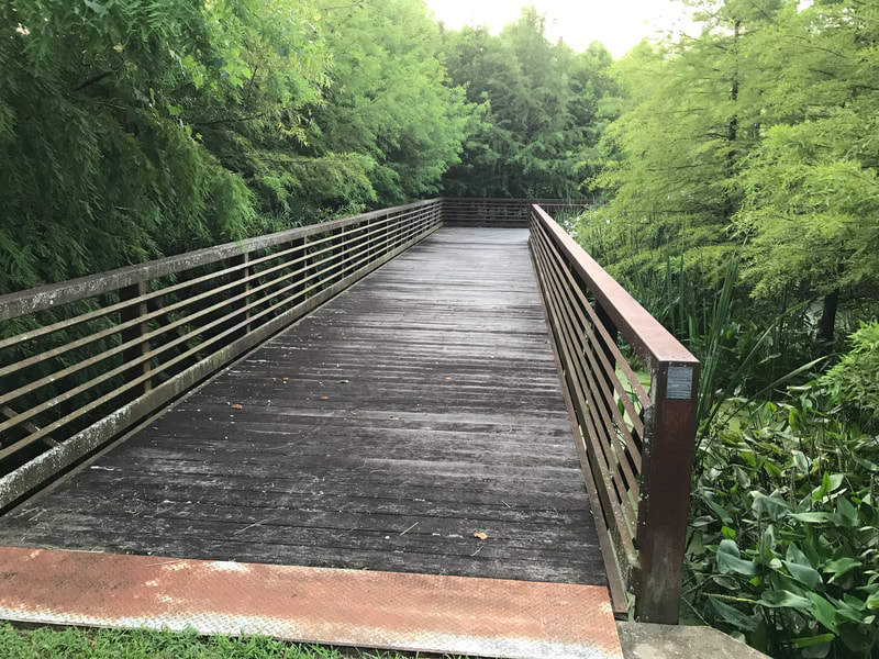 Dry Branch Wetland Trail: Parks, Paths and Trail around Williamson County, TN highlighted by Elena McCown, LLC a health coach in Franklin, TN